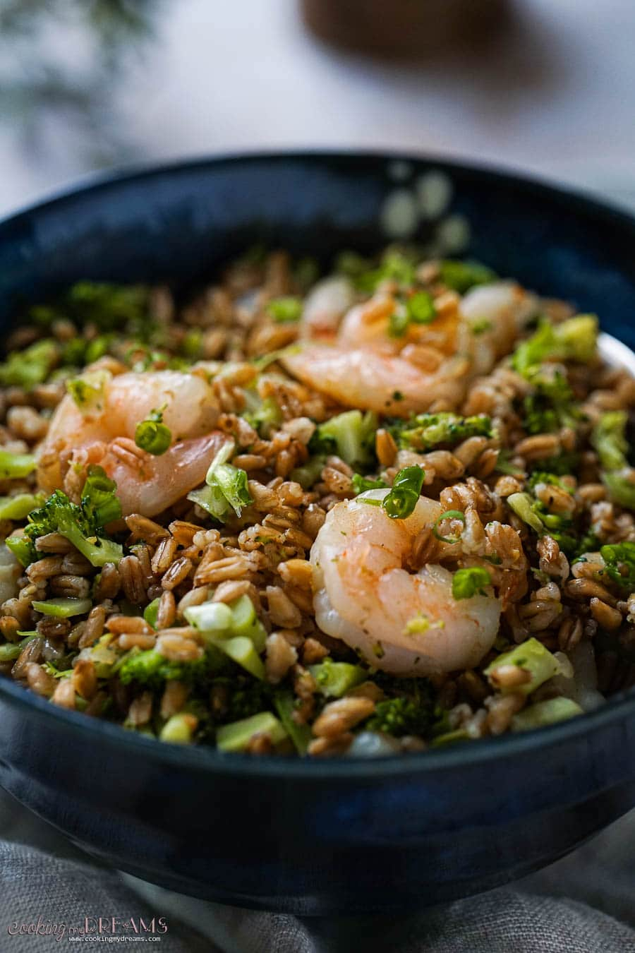 closeup of spelt with broccoli and shrimps